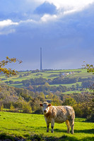 PHOTOGRAPHS OF EMLEY MOOR